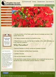 paradisetree